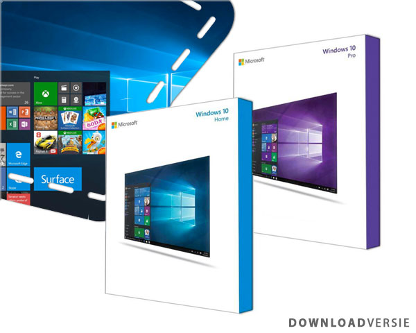 1 Day Fly - Microsoft Windows 10 Home Of Professional