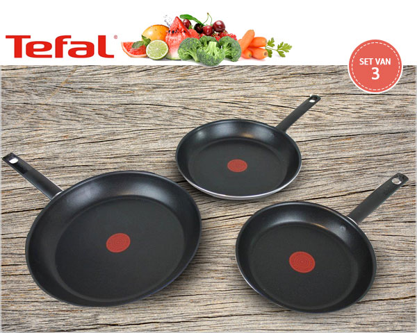 1 Day Fly Lady - 3-​Delige Tefal Koekenpannenset