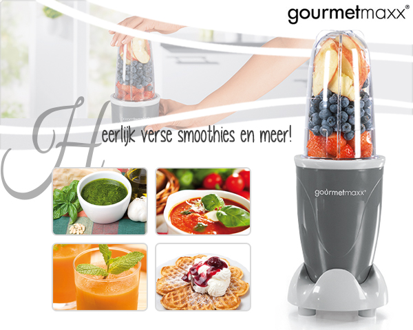 1 Day Fly Lady - Gourmetmaxx Power Smoothie Maker
