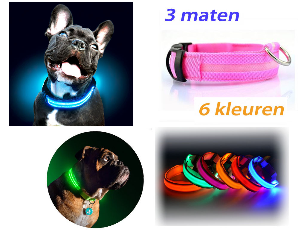 Click to Buy - LED halsband voor je hond