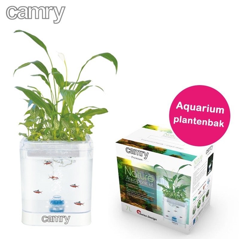 One Day For Ladies - Aquarium plantenbak